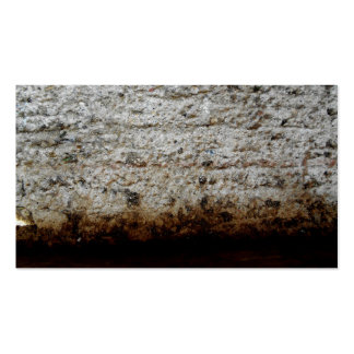 Rugged, Rustic Rock Plaster Business Cards