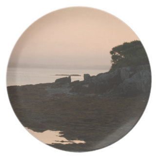 Rugged Shoreline at Dusk Party Plate