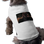 Rugido del gorila camisas de mascota
