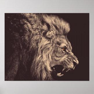 rugido del león del arte del lápiz del león blanco póster
