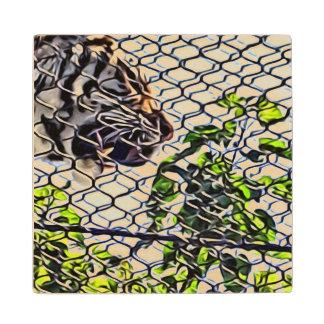 Rugido que camina de Tigar a través de la calzada Posavasos De Arce