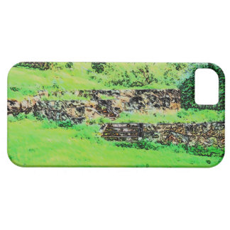 Ruin iPhone 5 Cover