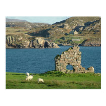 Ruin on Iona Postcard