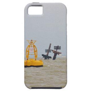 Ruina de la nave Richard Montgomery del vapor iPhone 5 Fundas