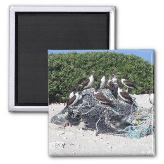 Ruina de la playa del atolón de Kure Imán Para Frigorifico