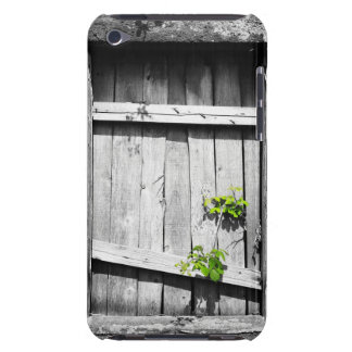 Ruinas Barely There iPod Protectores