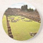 Ruinas de Roma Posavasos Cerveza