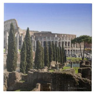 Ruinas del Colosseum romano de IL Palatino, Azulejo