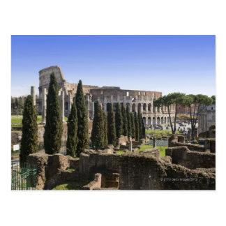 Ruinas del Colosseum romano de IL Palatino, Tarjeta Postal