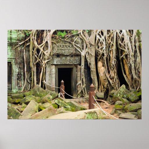 Ruinas del templo de la selva de TA Prohm en Cambo Impresiones