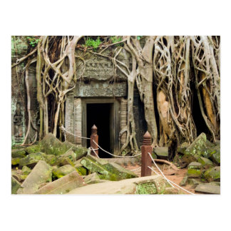 Ruinas del templo de la selva de TA Prohm en Cambo Tarjetas Postales