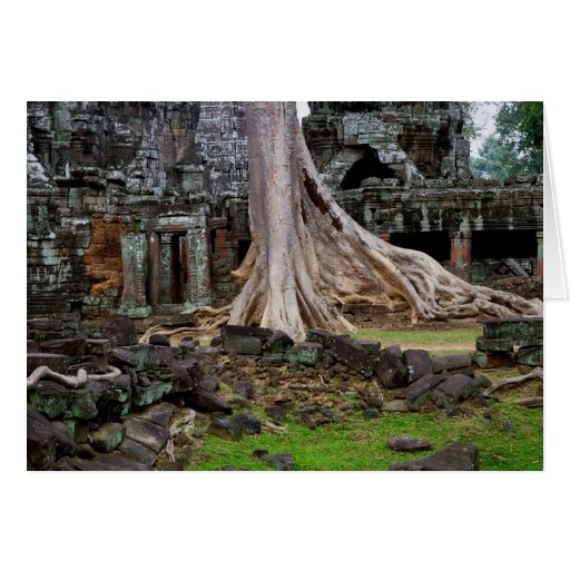 Ruinas del templo de TA Prohm en Camboya Tarjeta De Felicitación