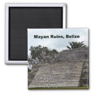 Ruinas mayas, Belice Imán Cuadrado