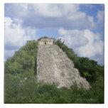 Ruinas mayas de Coba, península del Yucatán, Méxic Azulejo Cuadrado Grande