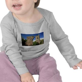 Ruine2 Camisetas