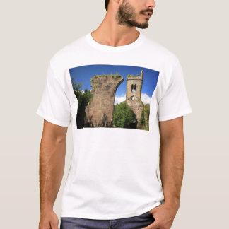 Ruine2 T-Shirt