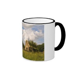 Ruined Ringer Mug