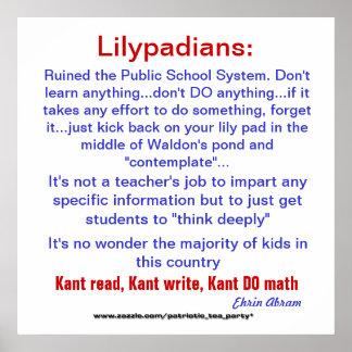 Ruined Schools Poster