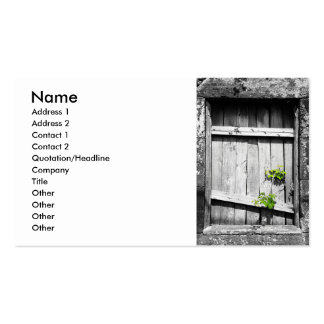 Ruins Double-Sided Standard Business Cards (Pack Of 100)