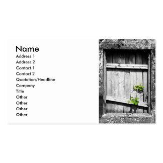 Ruins Business Card