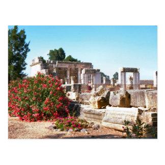Ruins of  Capernaum, Galilee Postcard