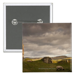 Ruins Of Cessford Castle With Sheep Grazing Pinback Button