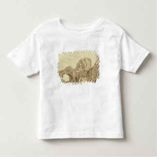 Ruins of Pevensey Castle (w/c on paper) Toddler T-shirt