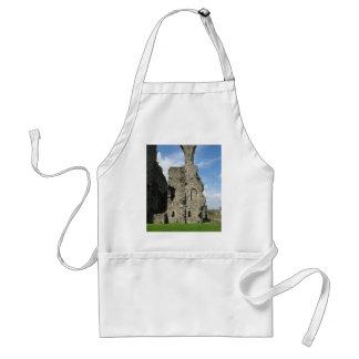 Ruins Of Richmond Castle Aprons