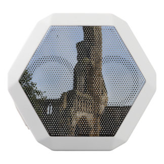 Ruins of St Andrews White Bluetooth Speaker
