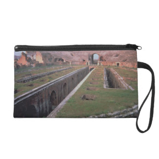 Ruins of the Amphitheatre, detail of a gallery giv Wristlet Clutches