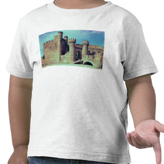 Ruins of the Castle of the Knights Templar Shirt