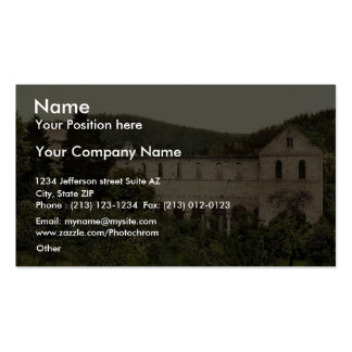 Ruins of the convent, Paulinzella, Thuringia, Germ Double-Sided Standard Business Cards (Pack Of 100)