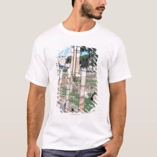 Ruins of the Temple of Castor and Pollux, Italy T-Shirt