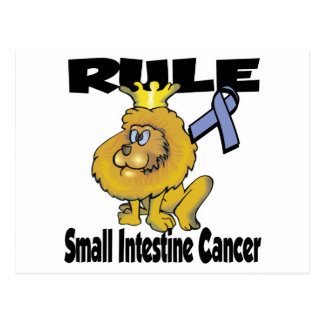 Rule Small Intestine Cancer Postcard
