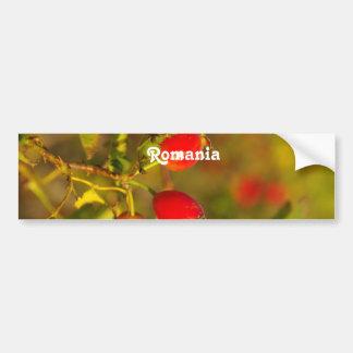 Rumania Pegatina Para Auto