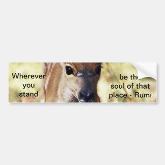 Rumi dondequiera que usted se coloque pegatina de parachoque