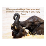 Rumi Soul joy Postcard
