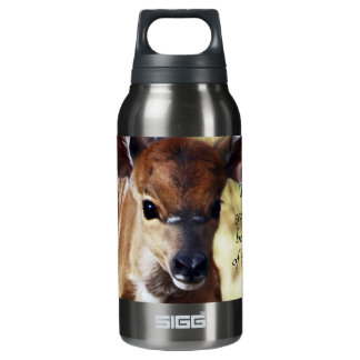 Rumi Wherever you stand Insulated Water Bottle