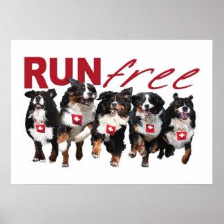 Run Free Berner poster