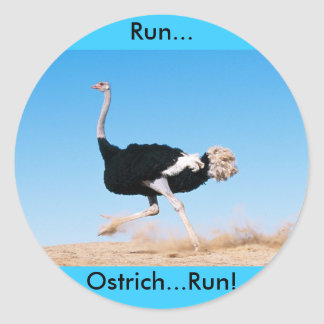 Run Ostrich Run Sticker