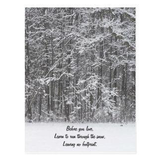 Run Through the Snow Postcard