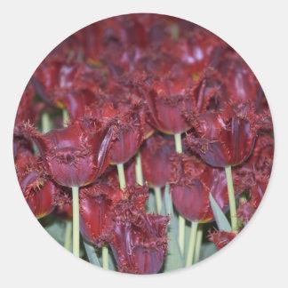 Run Through the Tulips Classic Round Sticker