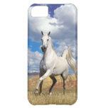 Run Wild Run Free Case For iPhone 5C