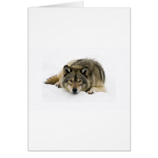Run With The Wolf Greeting Card