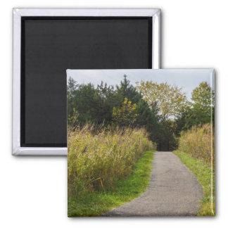 Runge Walkway Magnet