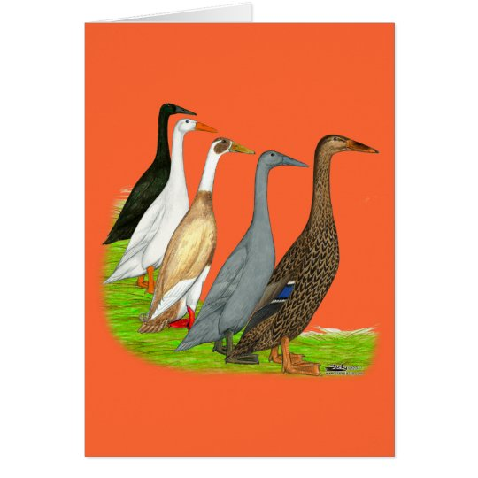 Runner Duck Assortment Card