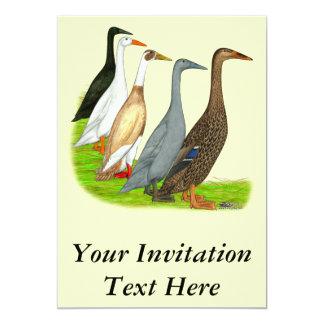 Runner Duck Assortment Card