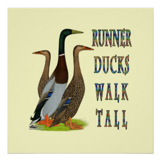 Runner Ducks Walk Tall Print