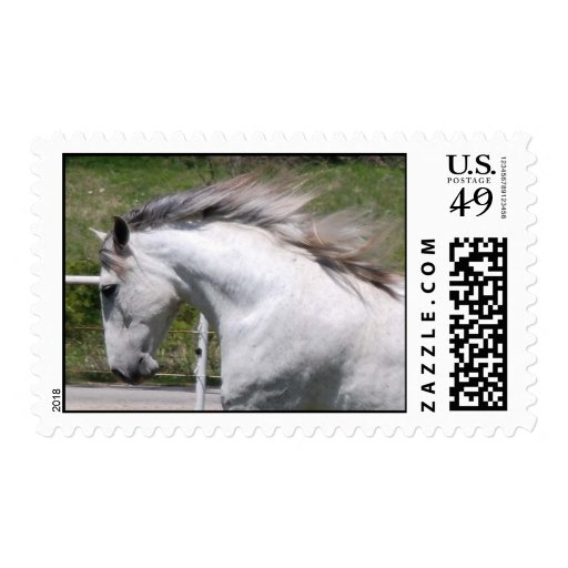RUNNING ANDALUSIAN CLOSE-UP STAMP