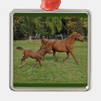 Running Arabian Horses - Mom and Foal Metal Ornament